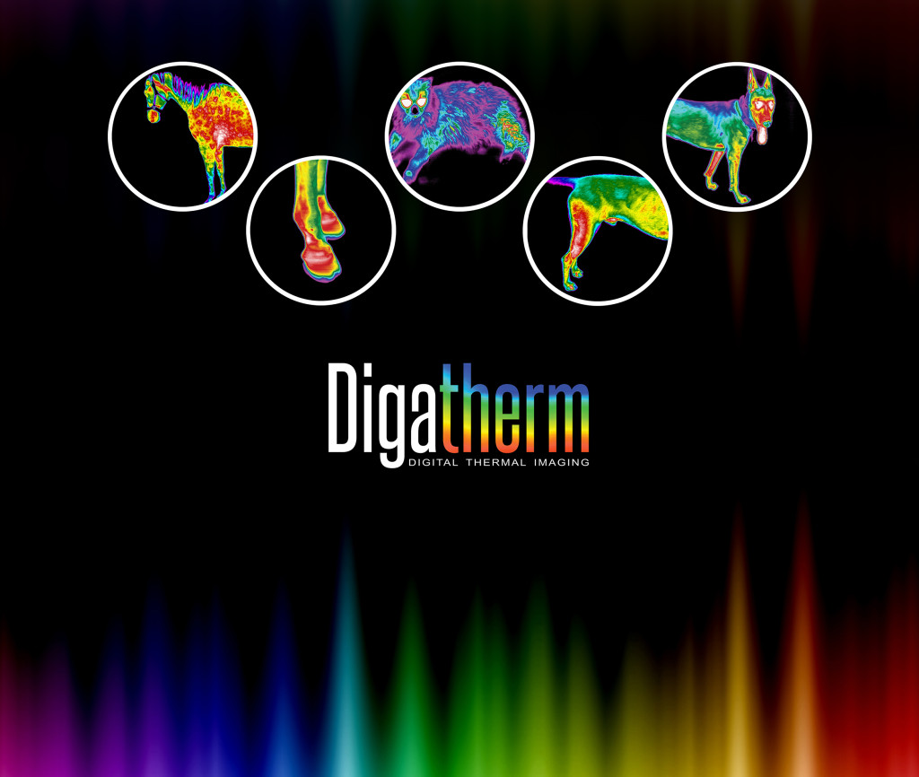 Digatherm2017_TradeShowBacklit
